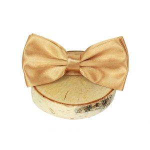 bow-tie-goud