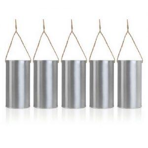 autoblikjes-zilver