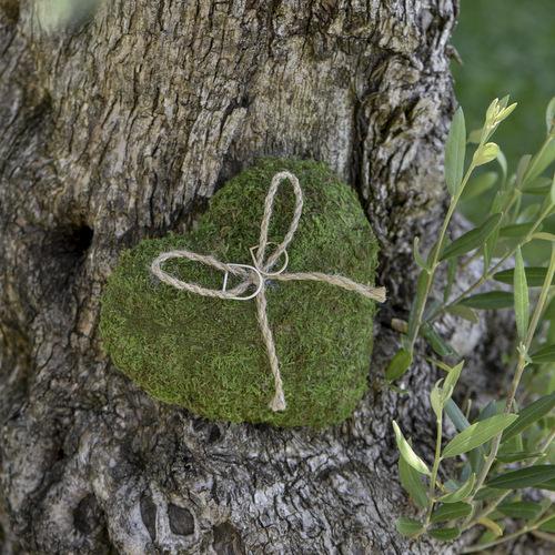 Ringkussen 'Heart Moss'