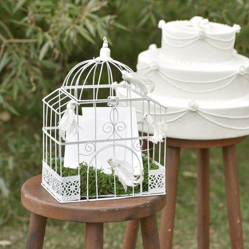 enveloppendoos-bird-cage