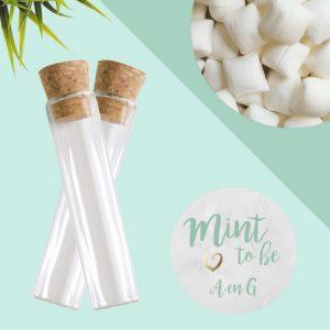 bruiloft-bedankjes-snoep-glazen-buisjes (6)