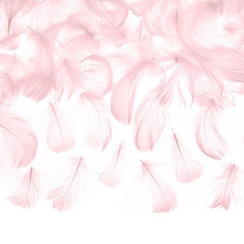 bruiloft-decoratie-decoratie-veren-pastel-roze