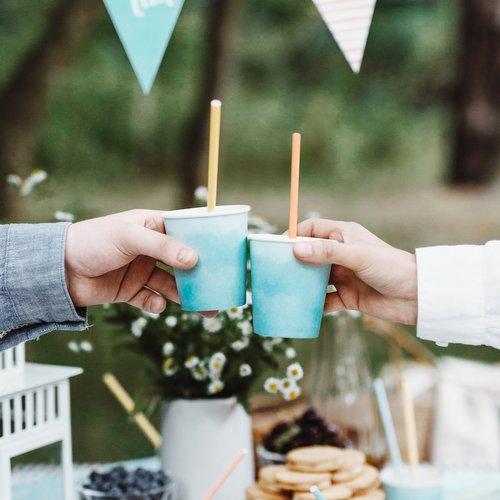 feestartikelen-papieren-rietjes-summer-time